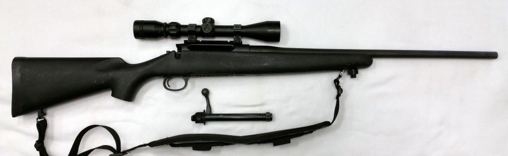 Remington 710 .270