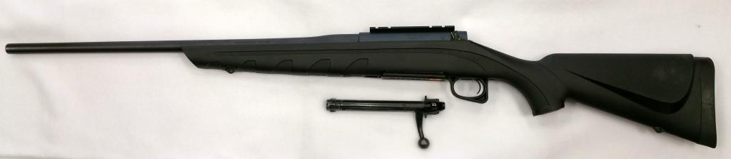Remington 770 .308-2