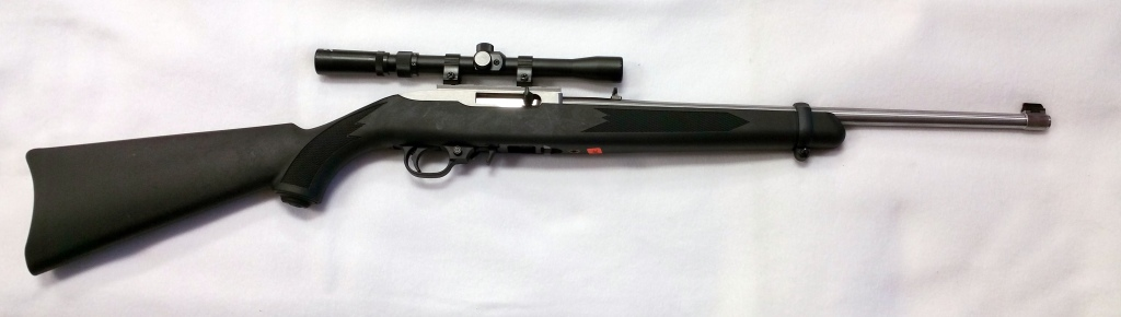 Ruger 10-22 Silver